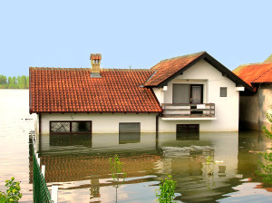 Flood Insurance Agent Woodinville, WA