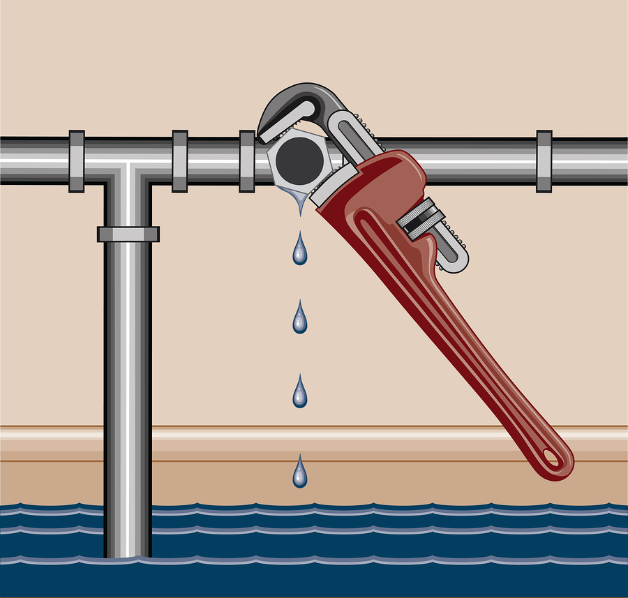 How to prevent water leaks in your Woodinville, WA home