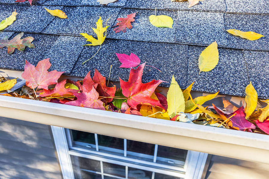 Fall Home Maintenance Checklist for your Woodinville, WA home