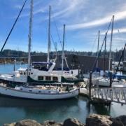Boat Insurance Policy Woodinville, WA