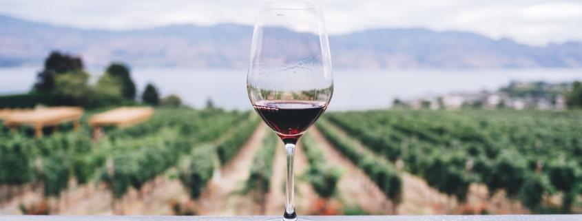 Winery Insurance in Woodinville, Washington